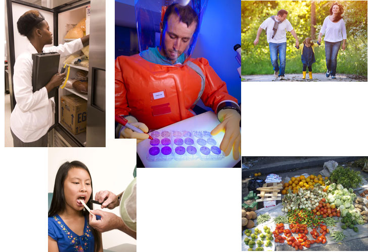 collage of images showing lab testing health care healthy food